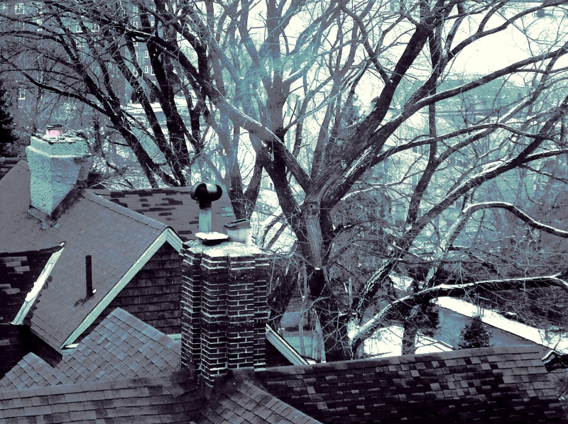 january-rooftops-2