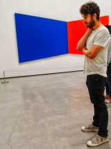 A visitor contemplates an Ellsworth Kelly painting (Blue Red, 1968).